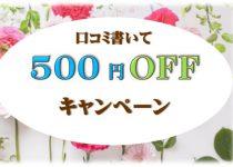 口コミを書いて500円OFFキャンペーン